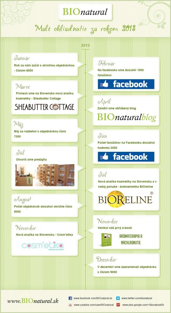 rok 2013 infografika