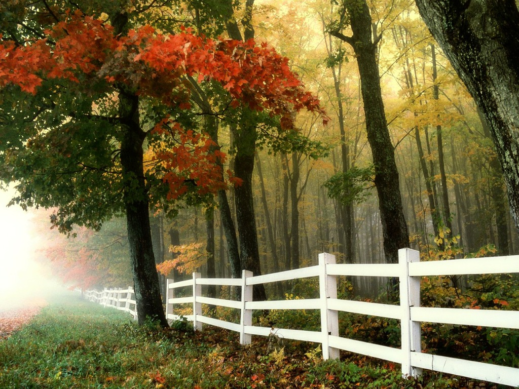 Jesenné skoré ráno