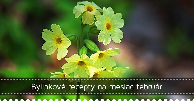Bylinkové recepty na mesiac február