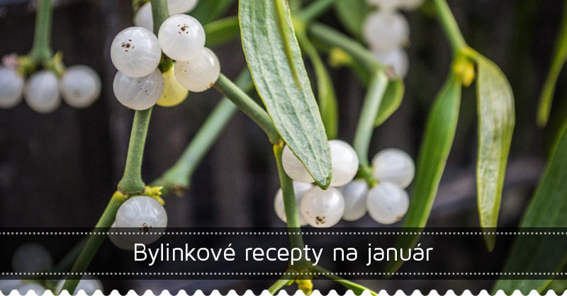 Bylinkové recepty na január