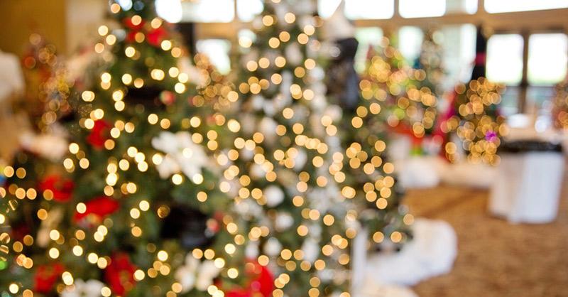 Otváracie hodiny predajne BIOnatural počas decembra